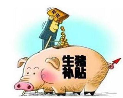 养猪有保险了?保费政府出大头?山东养猪出台养殖业政策保险