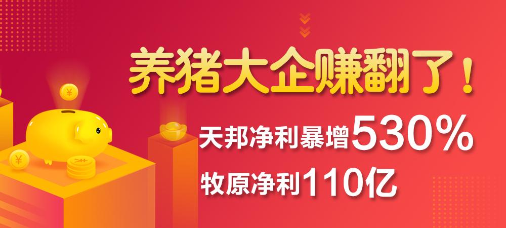 牧原净利110亿,天邦净利暴增530%,养猪大企今年赚翻了!