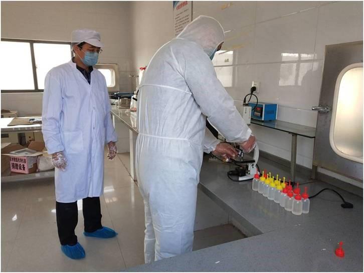 江苏省产业技术体系助力赣榆生猪产业发展