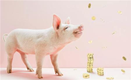 """7月14日猪市震荡!多方面利空,刚涨2天的猪价便""""闻风而下""""!"""