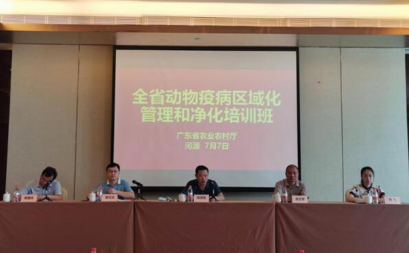 广东:力争今年建成3-5个非洲猪瘟无疫小区并通过国家首批验收