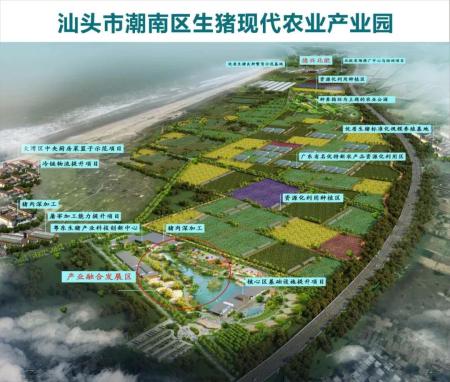 年出栏生猪25万头!潮南区生猪产业园带领农民增收,驱动生猪产业升级