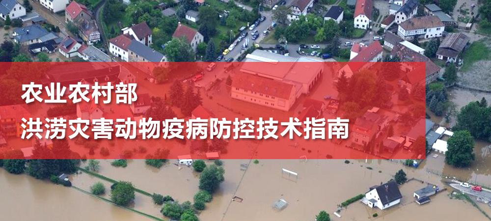 农业农村部:洪涝灾害动物疫病防控技术指南