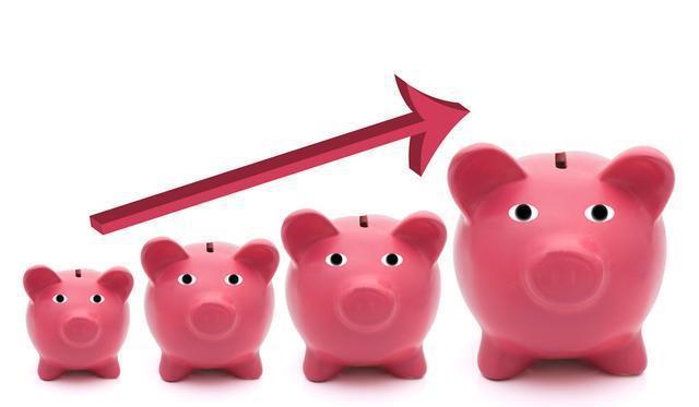 河南农开旗下基金1.35亿元投资生猪养殖企业,正开展龙凤山债转股工作