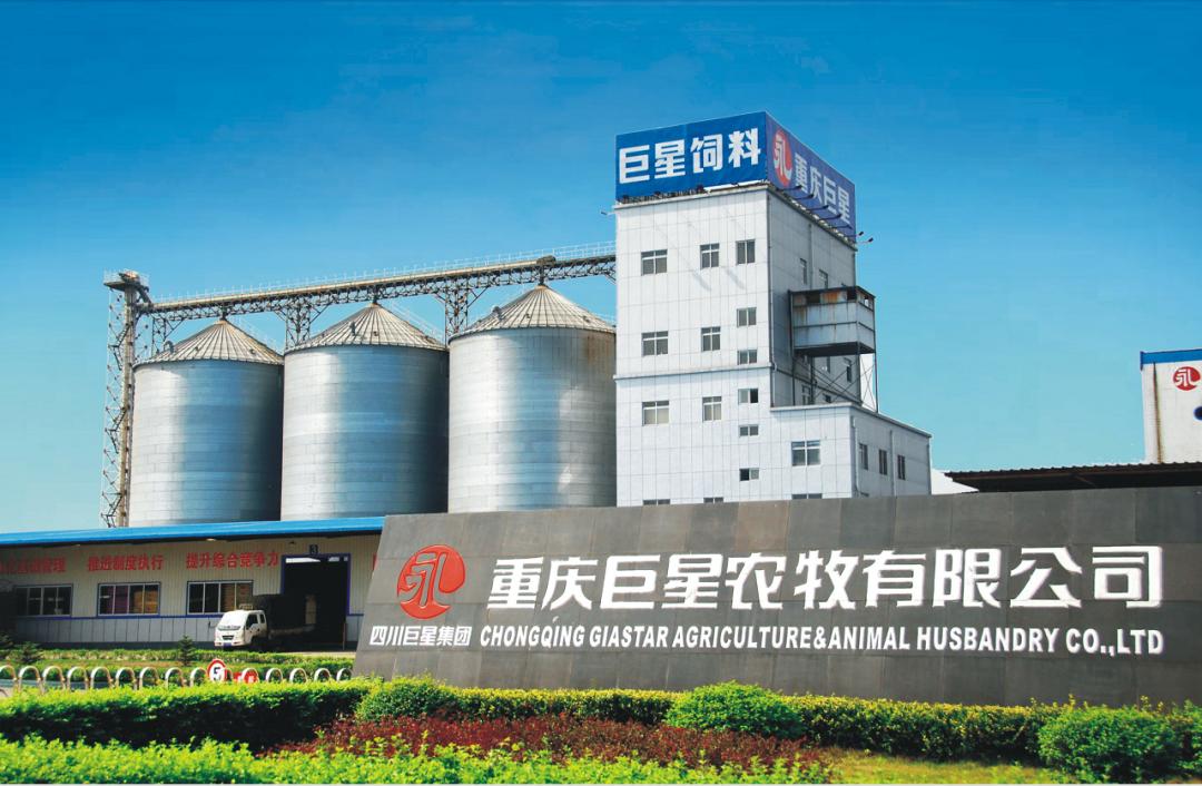 养猪概念股迎来新成员:四川巨星农牧完成整体上市!