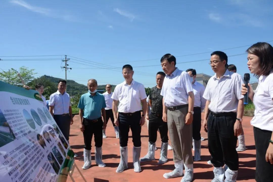 农业农村部副部长于康震高度赞赏德康稳产保供成效