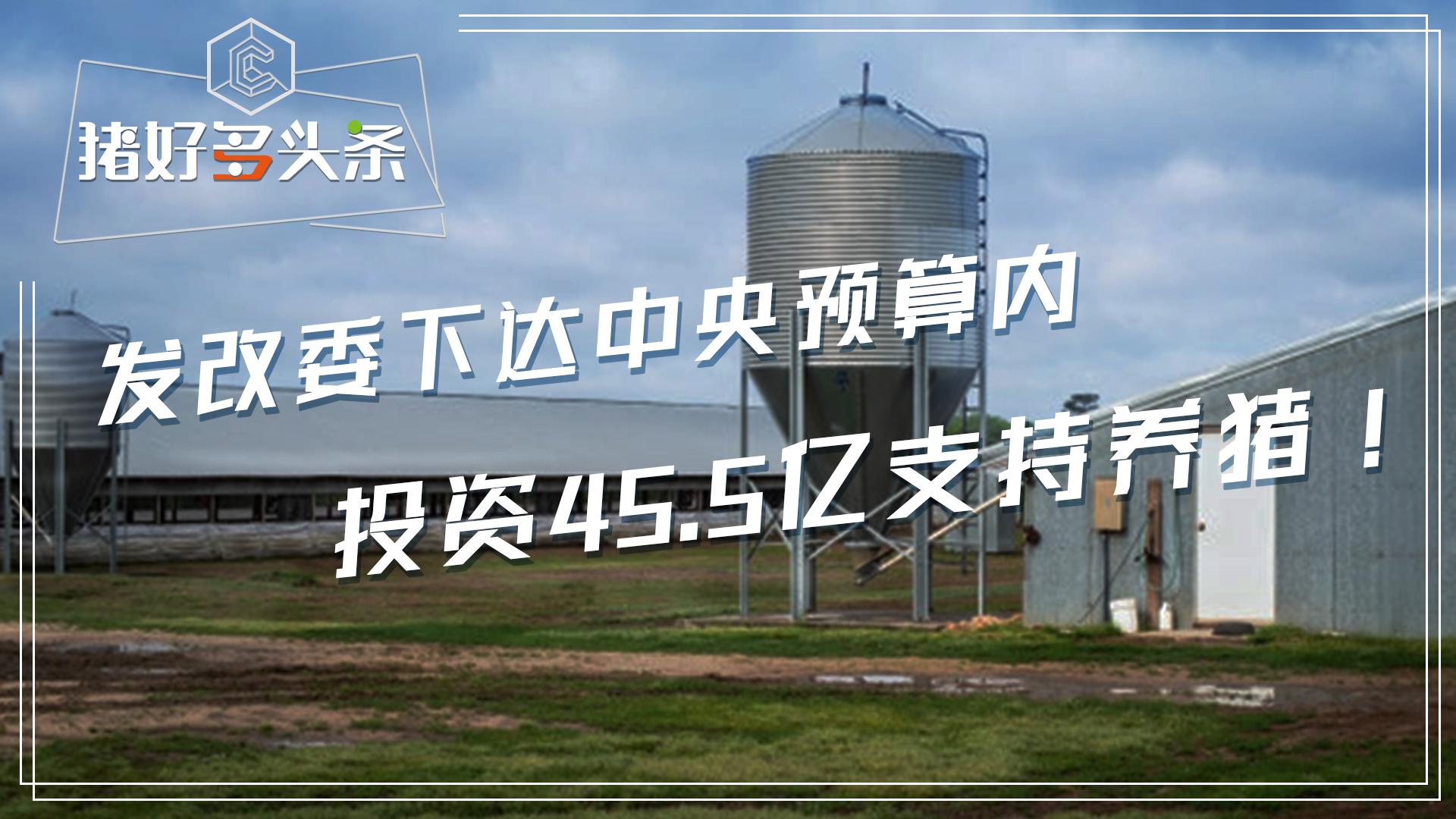 国家鼓励养猪:发改委下达中央预算内投资45.5亿元支持养猪!