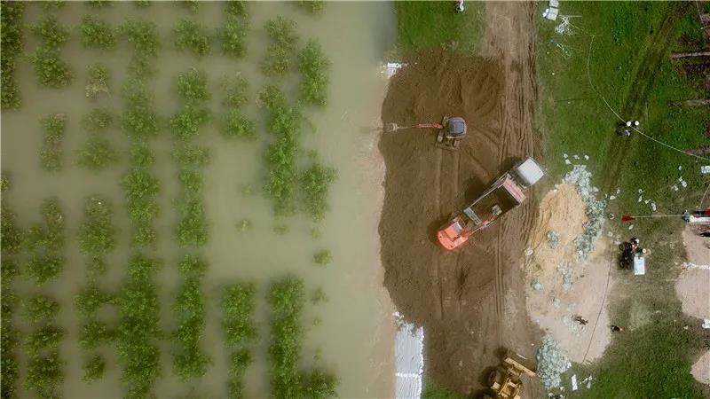 国家下达3.3亿元救灾资金支持南方7省抗洪减灾!对受淹畜禽圈舍进行全面消毒