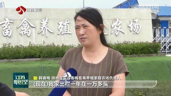 江苏:生猪和能繁母猪存栏连续9月回升 较一季度增长30%和38%