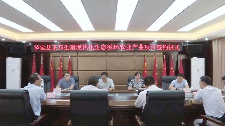 四川:疫情防控+稳产保供——泸定县预计年底出栏生猪4.6万头