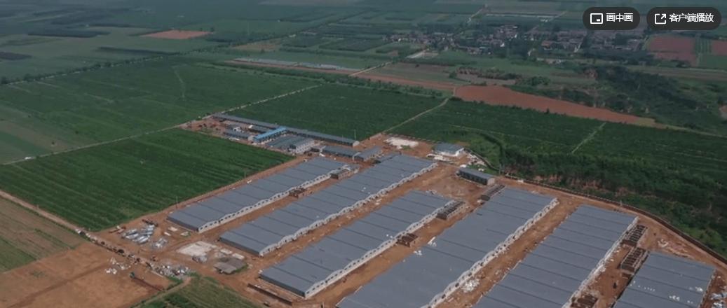 温氏40万头生猪养殖一体化项目8月底将全面投产