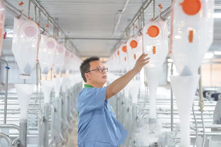 技术员查看智能化自动料线系统