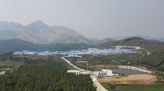 龙凤山牧业的生猪养殖基地外景