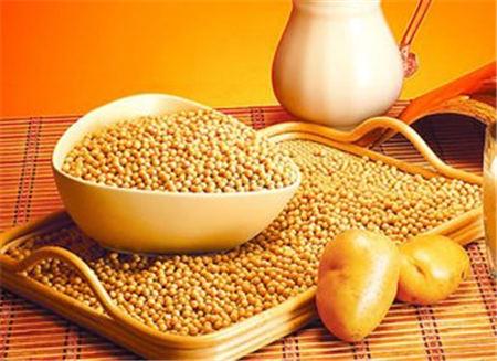 8月豆粕市场在充分调整后有望再度上涨 利多的主要因素有...