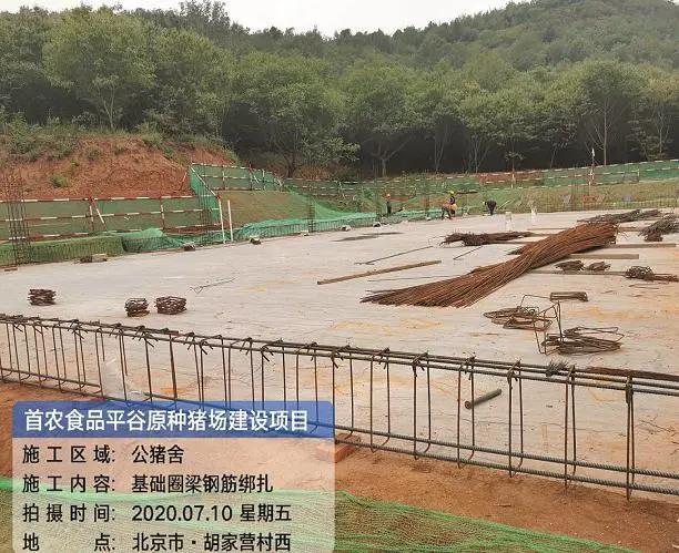 北京首个国家畜禽种业产业园在平谷启动创建