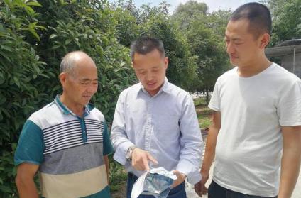 四川沿滩:做强生猪产业 构建健康养殖新格局