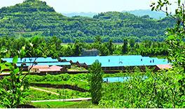 德康在南充市蓬安县进行种猪养殖试点。