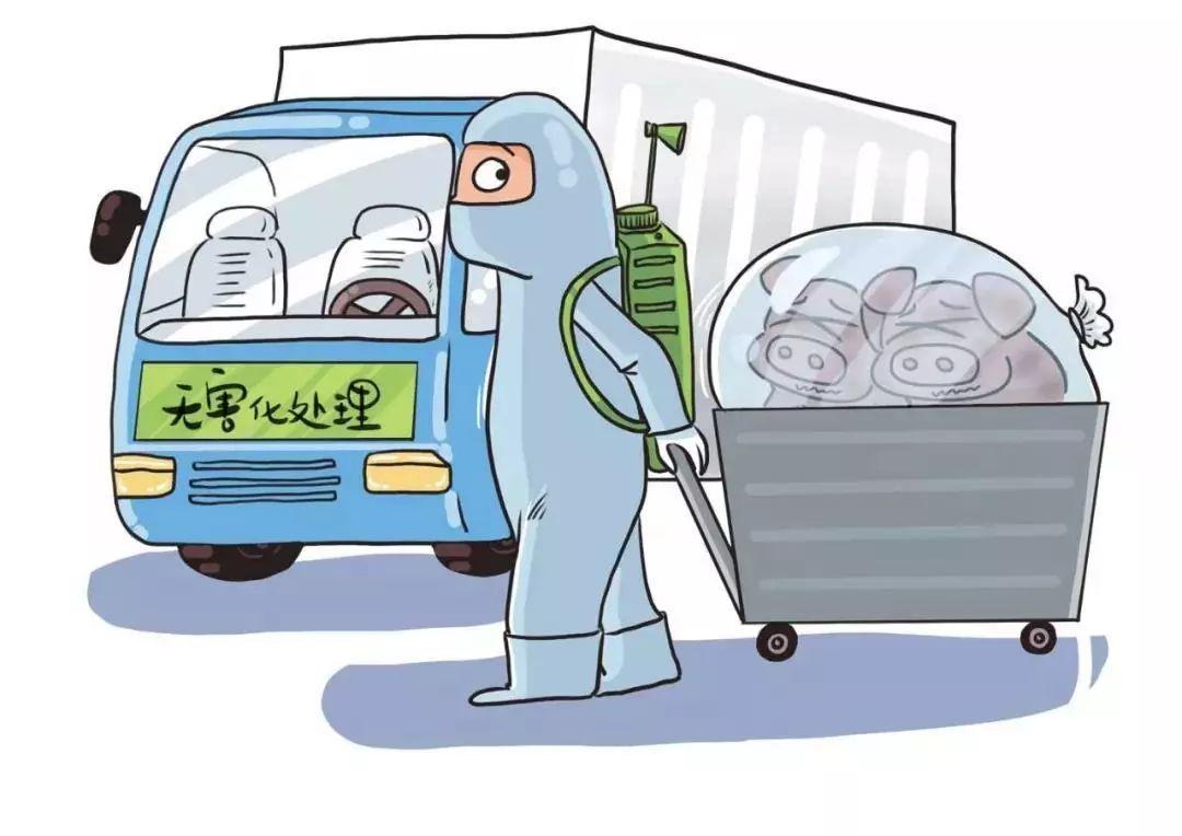 非洲猪瘟仍是推动中国猪肉进口激增的主要因素