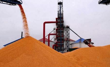 贸易商:华北地区玉米价格降价范围扩大,玉米将迎来大跌?