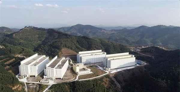 6层楼、12亩地就能养10万头猪,高楼养猪真有这么神奇?