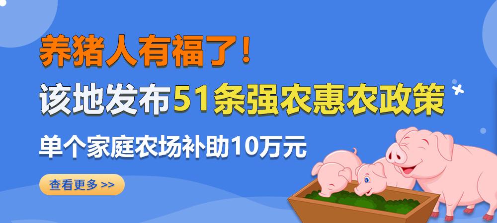 养猪人有福了!该地发布51条强农惠农政策,单个家庭农场补助10万元