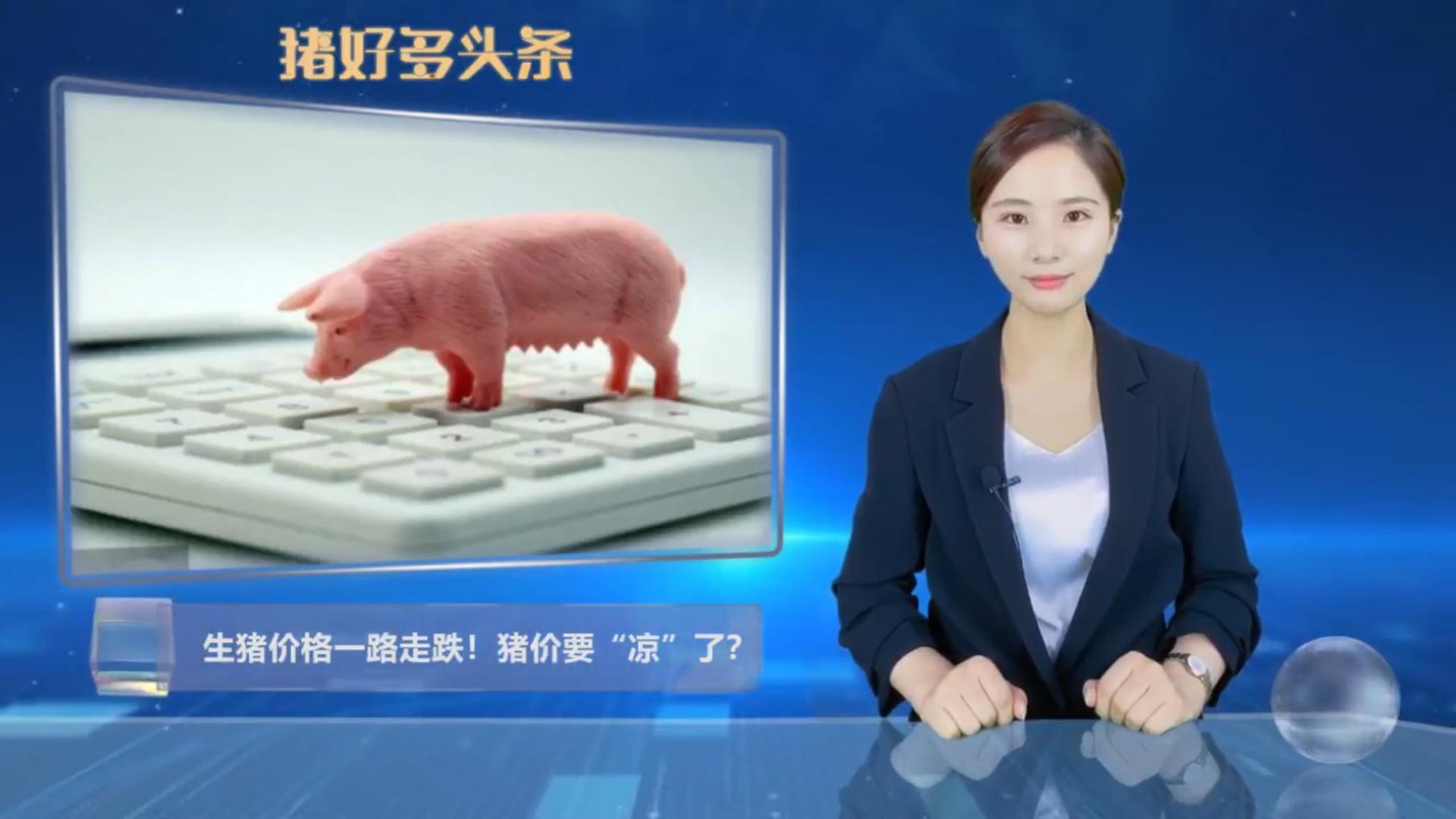 """猪价持续""""飘绿"""",三大因素导致猪价下跌,专家预计月底上涨!"""