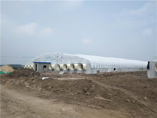 新希望六和首个单拱大跨度大棚种猪场竣工 单体猪场建造成本降低约35%