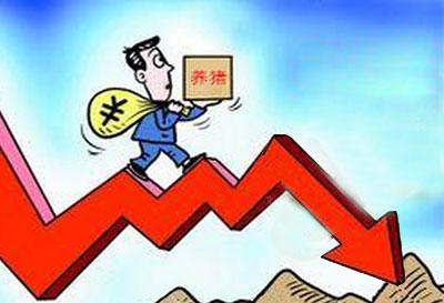 供应增加消费偏弱 猪价上涨动力不足