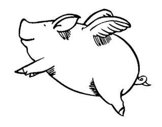 四川长宁:国网长宁供电公司精心服务生猪养殖业