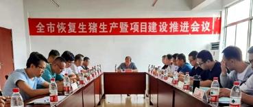 山东高密:召开恢复生猪生产暨项目建设推进会议