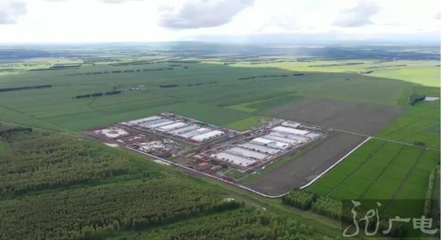 黑龙江:林甸引来龙头企业 做大生猪产业