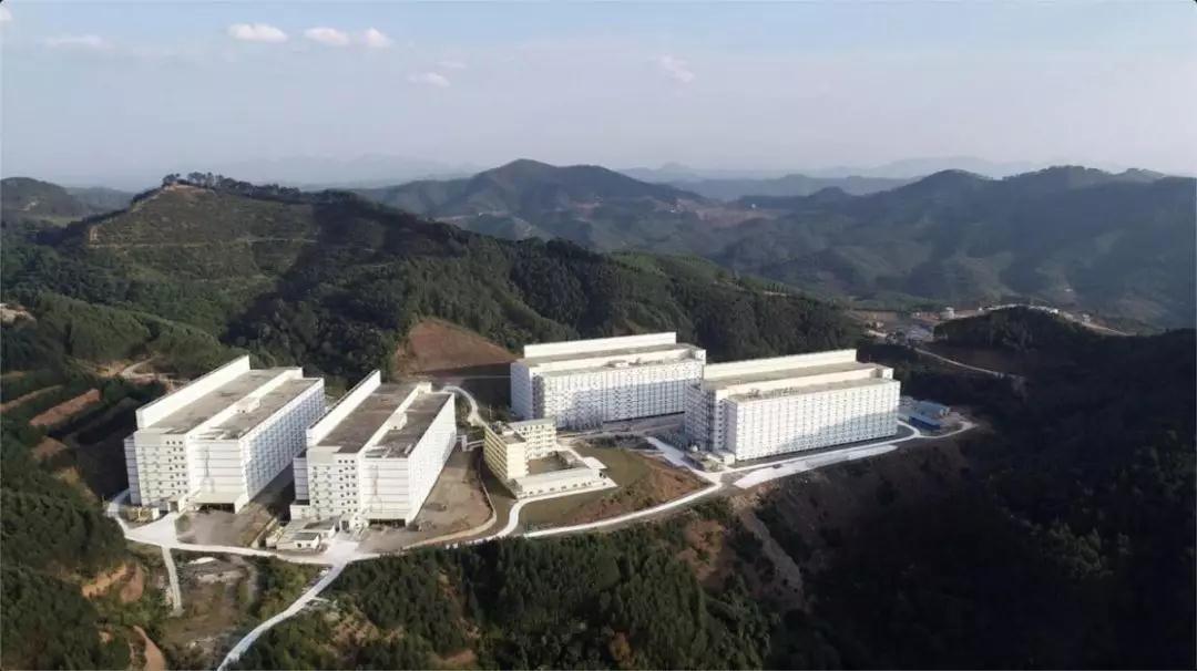湖北鄂州:楼房智能化养猪项目开建