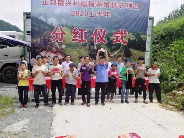 贵州三都:龙头企业带动生猪养殖 贫困群众喜领产业分红