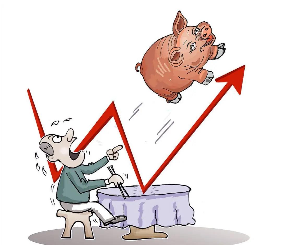 猪价大面积上涨!双节即将来临,各省猪价一片飘红,后续会如何?