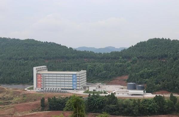 """四川:""""稳产保供""""的嘉陵生猪,推动生猪产业的转型升级、绿色高质量发展"""
