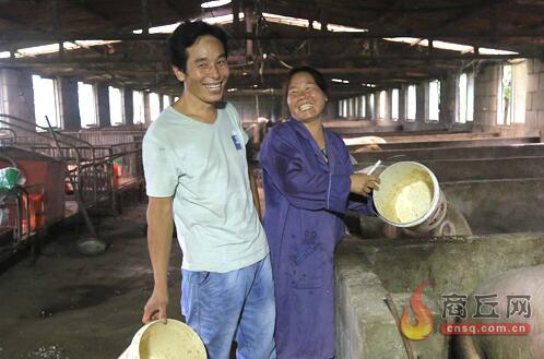 """河南宁陵:靠养猪这对""""猪倌""""夫妻实现从贫困到小康的逆袭!"""