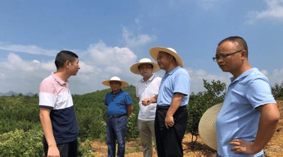 湖南省现代农业集团在零陵布局生猪产业项目建设