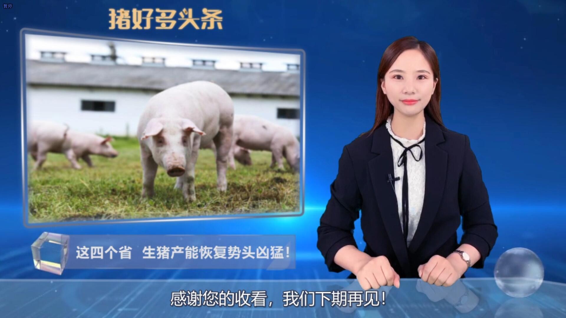 全国生猪生产恢复已取得阶段性成效,这四个省产能恢复势头凶猛