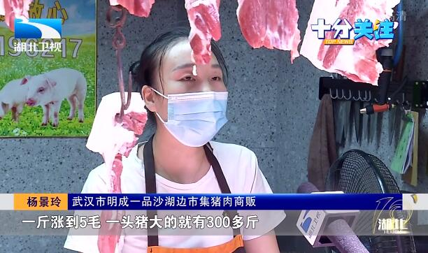 """长江观察 :猪肉价格还会""""飞""""多久? 生猪生产恢复态势如何?"""