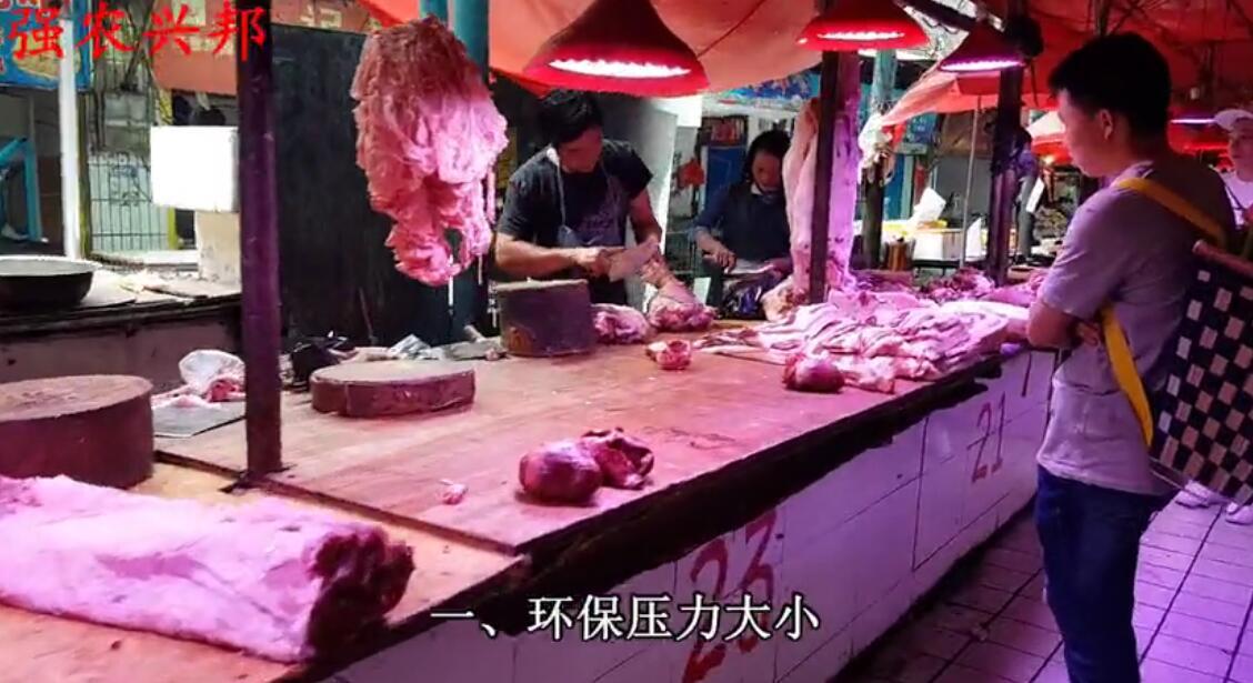 环保压力大小?母猪产能的恢复程度?进口肉的多少?决定猪价!