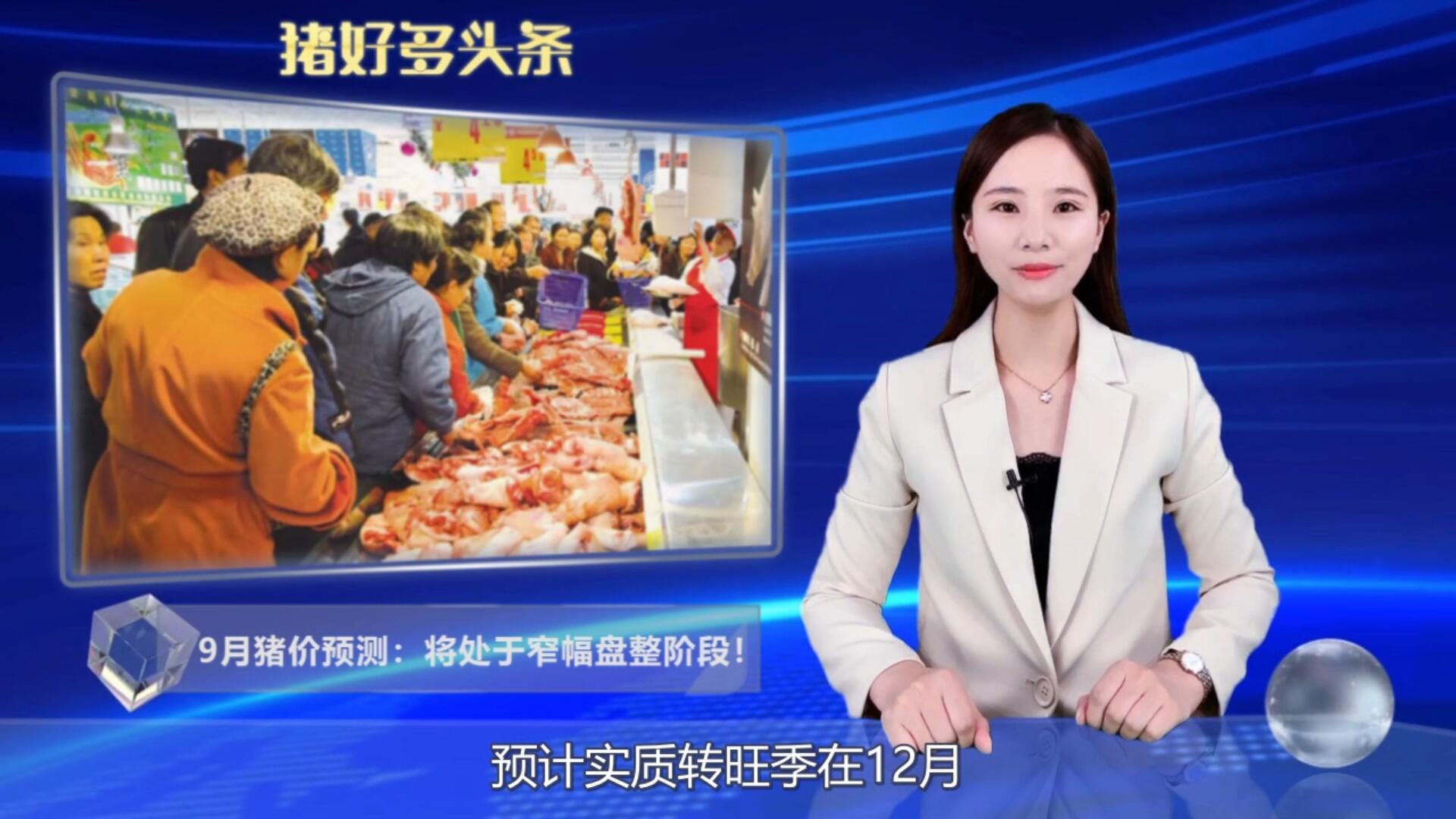 养殖端补栏意愿减弱,仔猪报价承压下行,9月猪价上涨或限行?