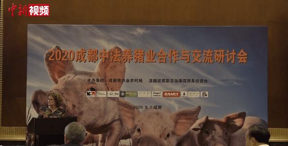 中法养猪业合作与交流研讨会在成都举行