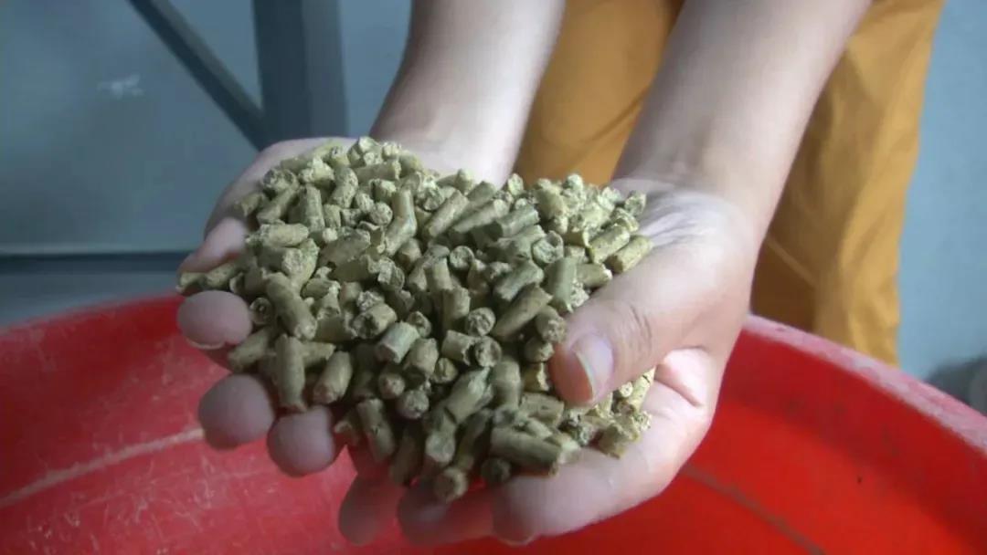 玉米下跌近100元豆粕下跌210元是否能触动饲料价格下跌的那根弦?