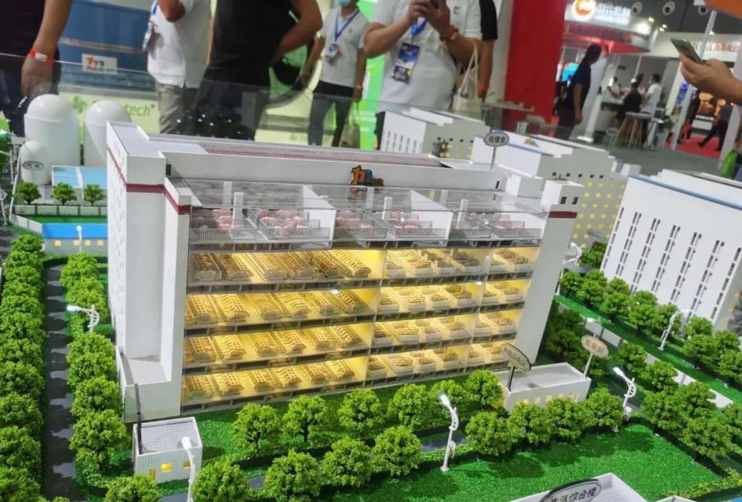 四川布局64个楼房养猪项目,每头猪多赚200元!新的风口来了?