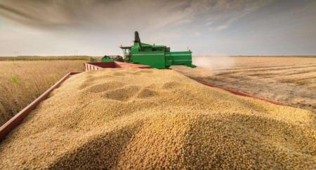 美豆减产或成定局,豆粕能否继续冲高?