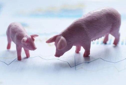 28家农牧企业发布2020年半年报,看看哪家企业最赚钱?