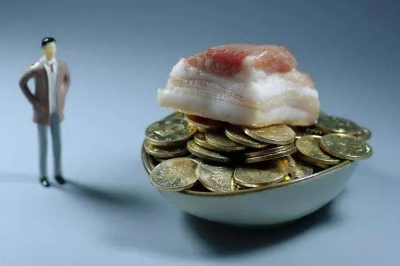 9月14日生猪价格大跌!德国猪肉被禁,会影响国内猪价吗?