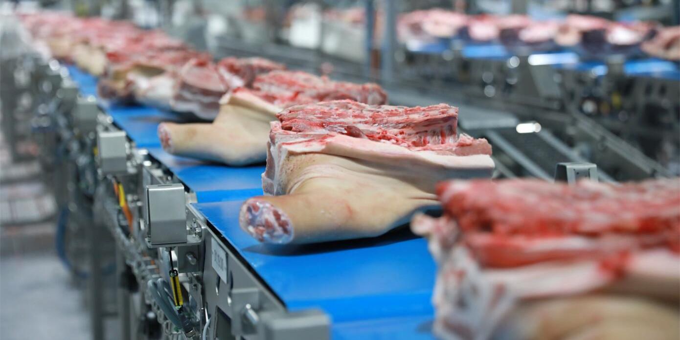 2020年1-8月全国生猪屠宰数据统计分析:前8月生猪屠宰量为8575.17万头