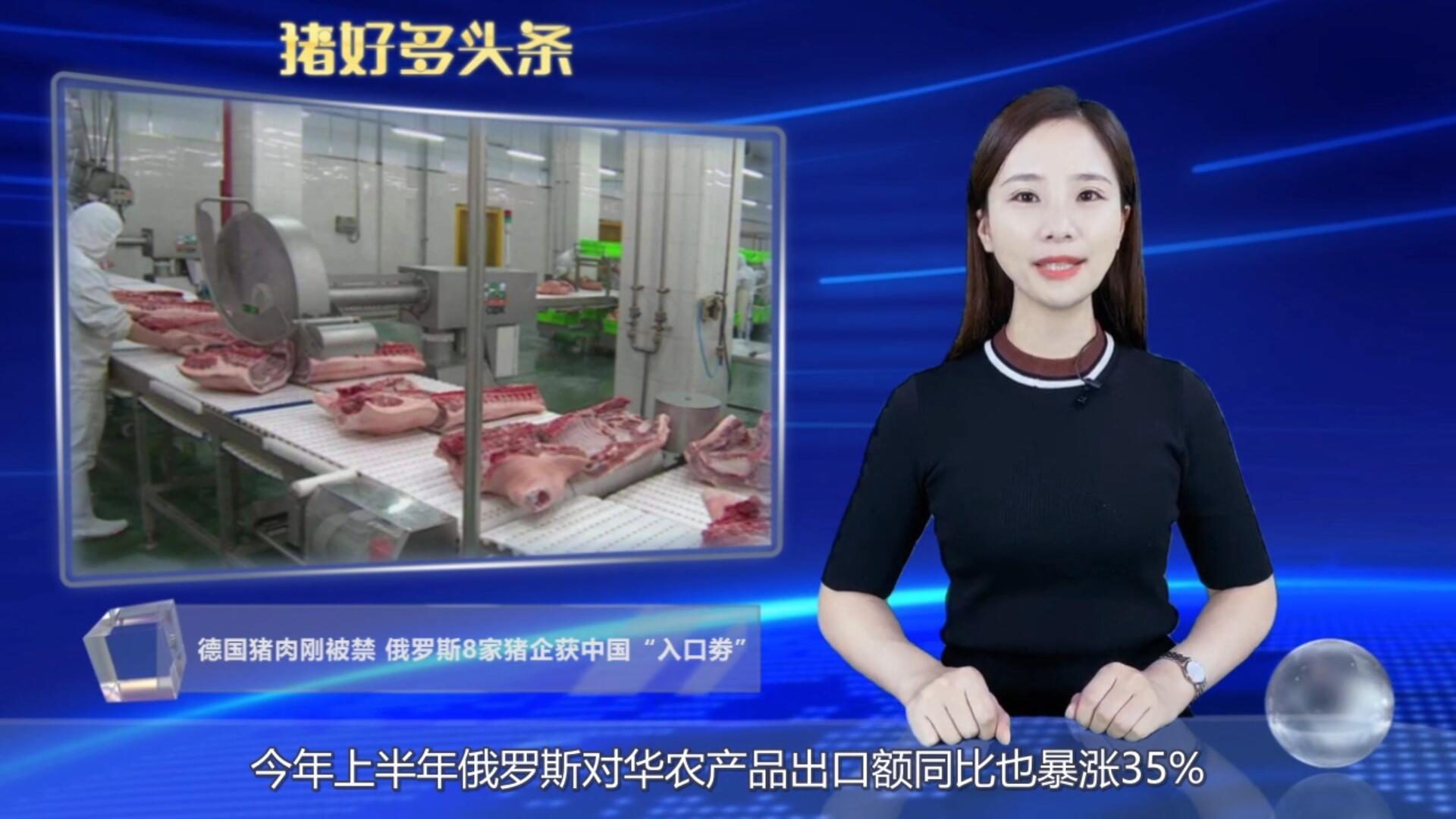 """德国猪肉遭禁止,俄罗斯共49家肉企获中国""""入场券"""""""