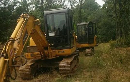 圈地迁坟为养猪让路?安徽一山林未批先建大型养猪场,数千树木被违规砍伐